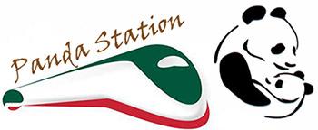 Sollevatore disabili accesso stazione treni ferrovie
